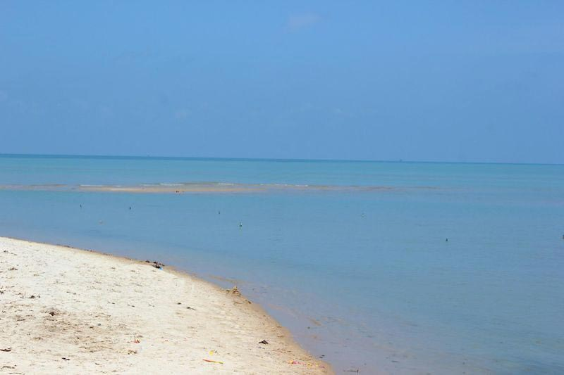 Gulf of mannar marine national park | marine nature ...