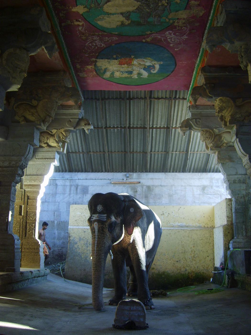rameshwaram-temple-poojas