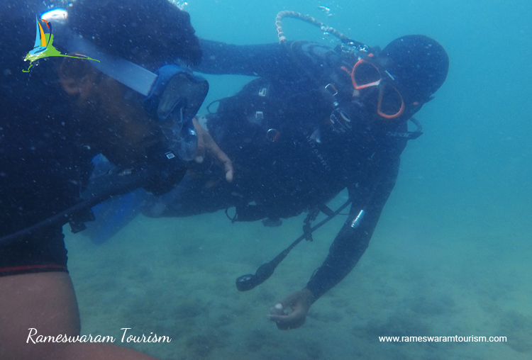 rameswaram-tour-watersprots-scuba-diving