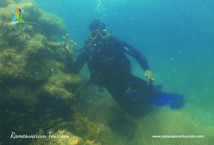 scuba-diving-in-rameshwaram