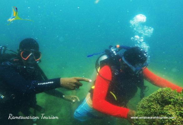 Scuba Diving in Rameswaram, Photos, Images, Prices