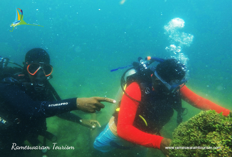 Scuba Diving in Rameswaram, Photos, Images, Prices